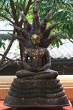 Bouddha d'or dans Wat Sakra Images libres de droits