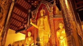 Bouddha d'or en Wat Phra Singh Chiang Mai banque de vidéos