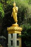 Bouddha dans la forêt photos libres de droits