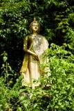 Bouddha en vallée Images libres de droits