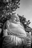Bouddha riant images libres de droits