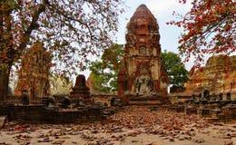 Bouddhist-Tempel während des Falles Stockfoto