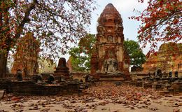 Bouddhist temple during fall. A temple in Thailand Stock Photo