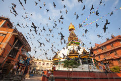 Boudhanath Stupa在加德满都谷 免版税库存照片