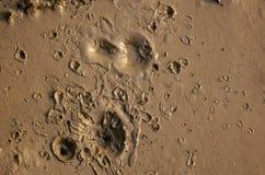 Boue avec des cratères Photo stock