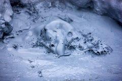 Boue de ébullition chaude dans Iceland3 Photos stock