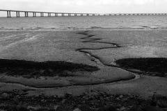 Boue de marée basse de rivière Photos libres de droits