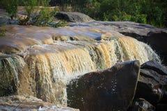 Boue et eau versant en bas d'un cours d'eau de jungle après pluie Image libre de droits