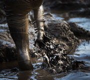 Boue glorieuse de boue de boue image libre de droits