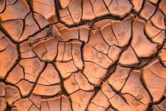 Boue sèche, fendue, rouge de désert Images libres de droits