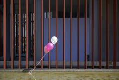 bouffée de ballons de partie dans le vent Photos libres de droits