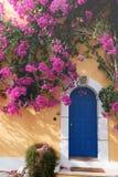Bougainvillaea In Assos Royalty Free Stock Photography