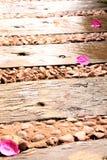 Bougainville blommabana Arkivbild
