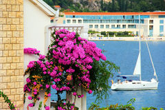 Bougainvillea on a balcony. A magnificent view of a purple Bougainvillea on a balcony, Croatia. A snow white yacht on a sea ideally completes the Mediterranean royalty free stock photo