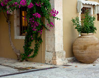 Bougainvillea and clay amphora Stock Images