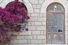 Bougainvillea on damaged house Royalty Free Stock Image
