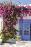 Bougainvillea de florescência na porta, característica Mykon imagens de stock royalty free