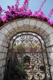Bougainvillea flowers on a house entrance, Anacapri, Italy Royalty Free Stock Photos