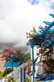 Bougainvillea flowers, Perissa, Santorini, Greece Stock Image