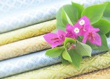 Bougainvillea kwiaty Zdjęcie Stock