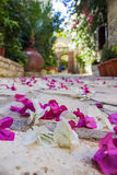 Bougainvillea Leaves Lying On The Pavement. Bougainvillea leaves lying on the pavement in Mediterranean town Stock Photography