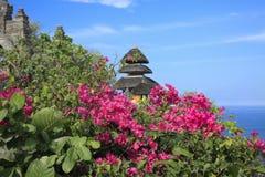 Bougainvillea med blåtthavet Bali Indonesien för hinduisk tempel Royaltyfri Bild
