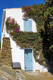 Bougainvillea on old mediterranean house Stock Photos