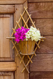 Bougainvillea with old wood. Royalty Free Stock Photography