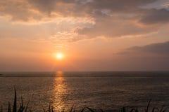 Bougainvillea and Orange Sunset above ocean Kerala. Orange Sunset above ocean India Kerala Sunrise Stock Image