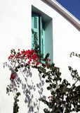 Bougainvillea and shutters. Stunning crimson bougainvillea with shutters and whitewashed building on the Greek island of Skopelos (where Mamma Mia was filmed royalty free stock photos