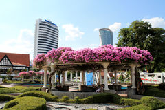 Bougainvillea summer house in the city Stock Images
