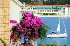 Bouganvilla auf einem Balkon Lizenzfreies Stockfoto