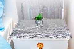 Bougie décorative de cactus photo stock