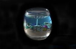 Bougie de thème d'océan d'isolement Photographie stock libre de droits
