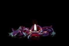 Bougie en fleurs Photographie stock libre de droits