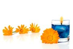 Bougie et fleur Photos libres de droits