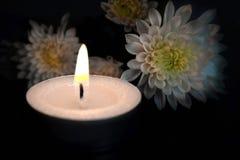 Bougie et fleurs blanches Images stock