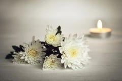 Bougie et fleurs blanches Image stock