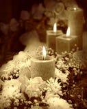 Bougie sur le fond floral Photos libres de droits