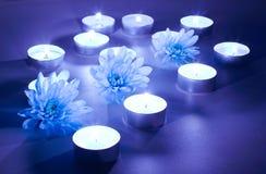 Bougies bleues de fleur et de thé Photographie stock libre de droits