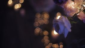 Bougies brûlantes par les branches blanches d'un arbre décoré des roses Vacances de Noël clips vidéos