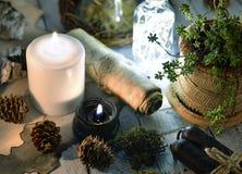 Bougies, cônes, succulent noirs et blancs et parchemin sur des planches photos stock
