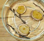 Bougies de cire d'abeille Photos libres de droits