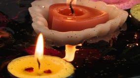 Bougies de fleurs et feuilles sur l'eau banque de vidéos