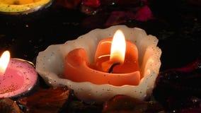 Bougies de fleurs et feuilles sur l'eau clips vidéos