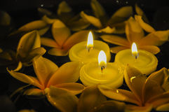 Bougies de flottement avec le Plumeria Photos stock