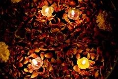 Bougies de flottement dans l'eau de Rose avec le souci Images libres de droits