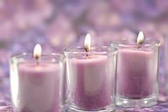 Bougies de lavande Image stock