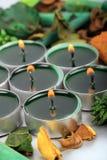 Bougies et pétales légers de sarcelle d'hiver Images libres de droits