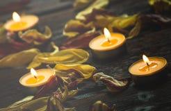 Bougies jaunes et pétales secs de fleur Image libre de droits